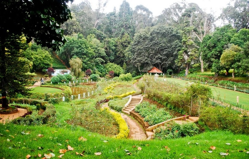Short Escape to Ooty